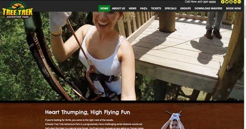 Altamonte Springs Website Design Orlando Graphic Design Orlando Tree Trek 1